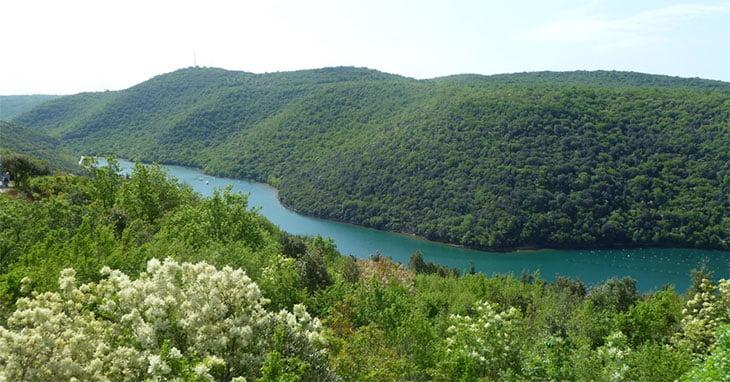 Lim Bay - Porec Istria Croatia