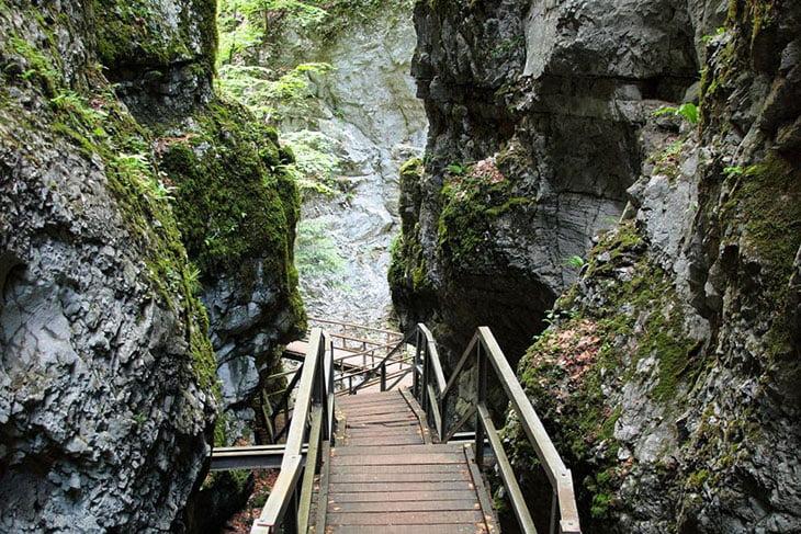 Risnjak National Park - Croatia