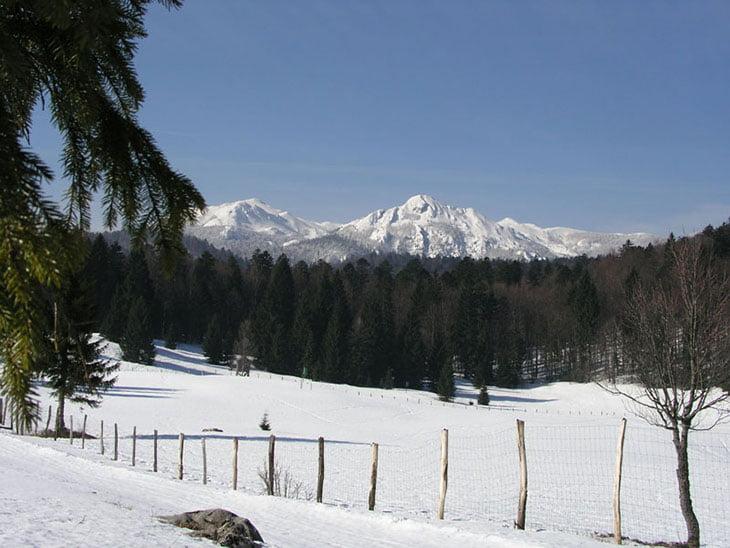 Skiing In Risnjak National Park